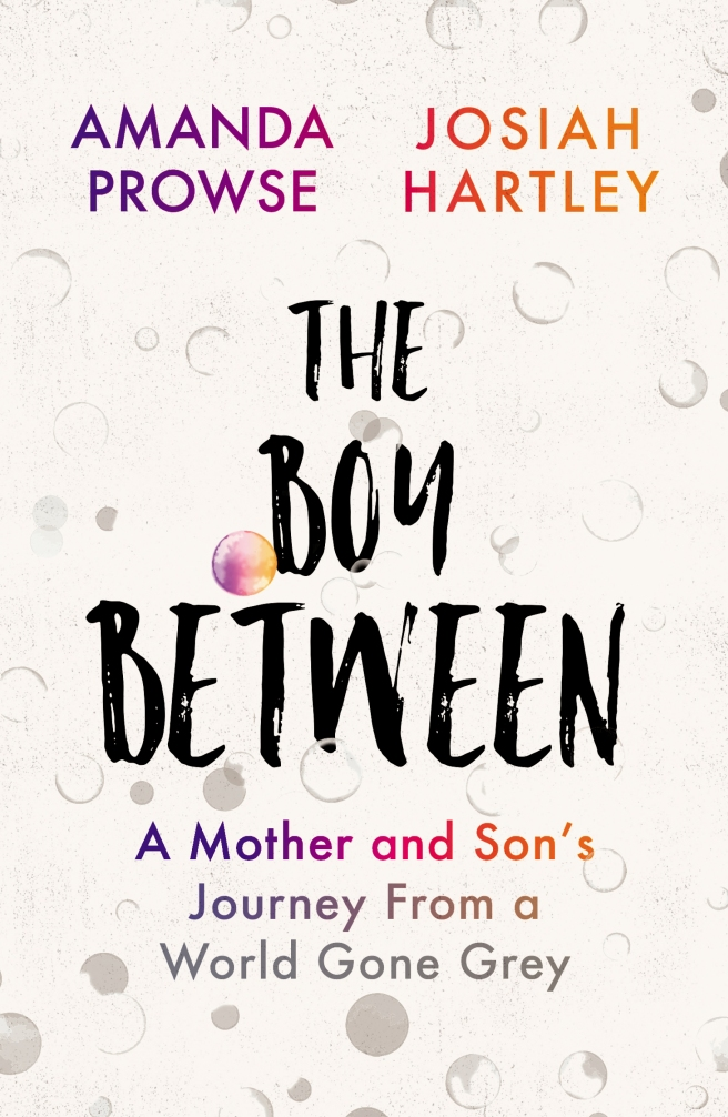 Cover_Template_UK_B_The Boy Between.indd
